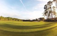LPGA International carries some of the most desirable golf course around Florida