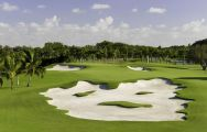 Trump National Doral Miami Golf provides among the preferred golf course in Florida
