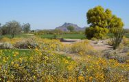 View Longbow Golf Club's lovely golf course situated in brilliant Arizona.