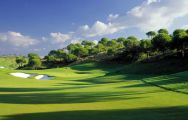 View Kaya Palazzo Golf Club's picturesque golf course within amazing Belek.