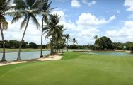Casa De Campo Resort Golf carries among the premiere golf course around Dominican Republic