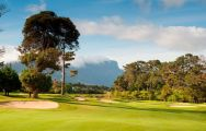 Steenberg Golf Club carries among the best golf course within South Africa