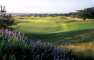 View The Links at Spanish Bay's impressive golf course in sensational California.