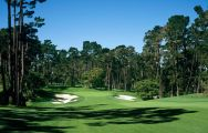 All The Spyglass Hill Golf Course's lovely golf course in magnificent California.