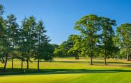 Sprowston Manor Golf Club has got some of the best golf course in Norfolk