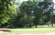 Chelmsford Golf Club has got some of the most excellent golf course around Essex