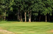 Ashridge Golf Club features several of the top golf course near Hertfordshire