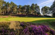 The Sunningdale Golf Club's beautiful golf course in magnificent Surrey.