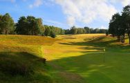All The Royal Ashdown Forest Golf Club's lovely golf course in pleasing Sussex.
