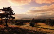 Royal Ashdown Forest Golf Club carries several of the most excellent golf course in Sussex