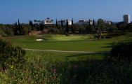 Marbella Golf and Country Club has among the most excellent golf course around Costa Del Sol