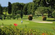 All The Rio Real Golf Club's lovely golf course in pleasing Costa Del Sol.