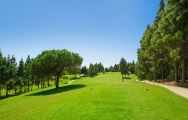 All The El Chaparral Golf Club by Chaparral Golf Club's scenic golf course in vibrant Costa Del Sol.
