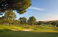 Pinheiros Altos Golf Club has some of the preferred golf course within Algarve