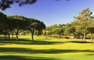 Pinheiros Altos Golf Club carries among the best golf course within Algarve