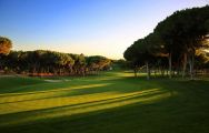 View Dom Pedro Vilamoura Old Golf Course's picturesque golf course within magnificent Algarve.