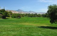 The Hotel Bonalba Alicante's lovely golf course situated in vibrant Costa Blanca.