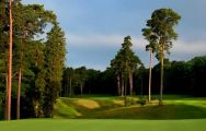 The Woburn Golf Club's impressive golf course within astounding Buckinghamshire.