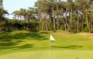 Golf de Chiberta has got lots of the most excellent golf course within South-West France