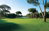 Cornelia Golf Club carries among the premiere golf course around Belek