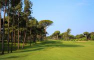 View Gloria New Golf Course's impressive golf course within incredible Belek.