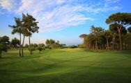 All The Gloria New Golf Course's lovely golf course in sensational Belek.