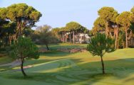 View Gloria New Golf Course's scenic golf course within amazing Belek.