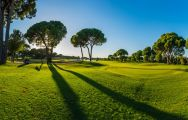 All The Gloria New Golf Course's impressive golf course within impressive Belek.