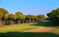 All The Gloria Old Golf Course's beautiful golf course in brilliant Belek.