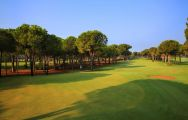 Gloria Verde Golf Course has got several of the preferred golf course around Belek