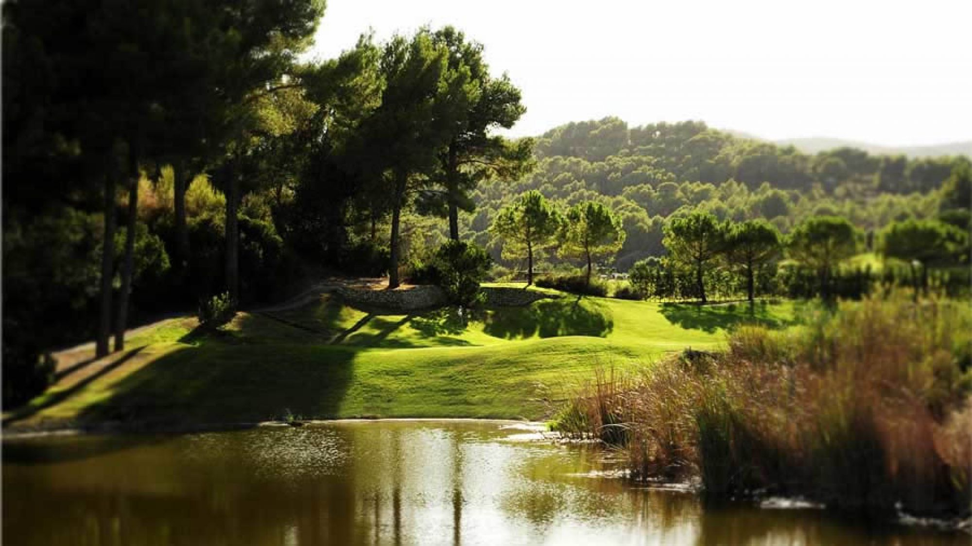 Son Muntaner Golf Course - Arabella Golf features some of the preferred golf course near Mallorca