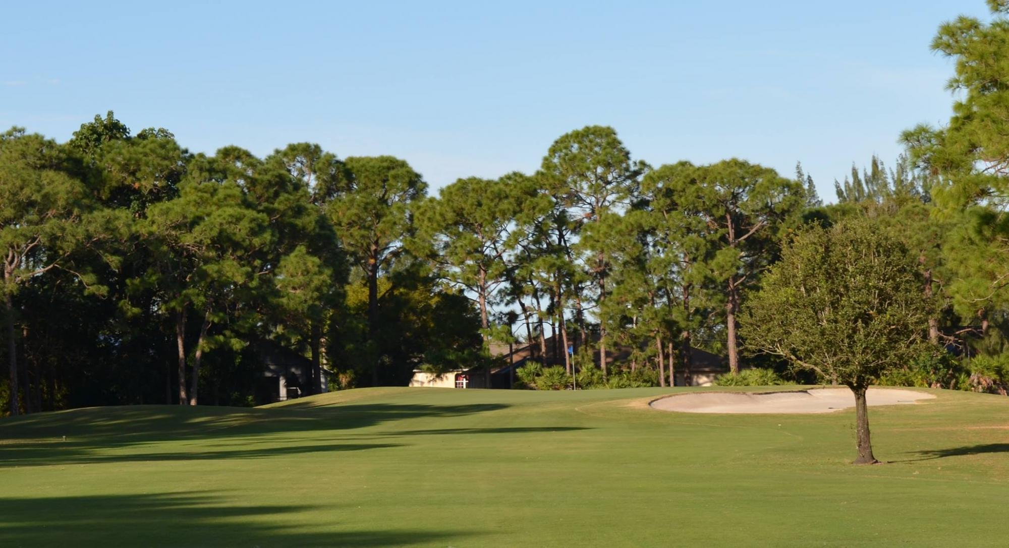View Palmetto Golf Club's impressive golf course situated in dazzling South Carolina.
