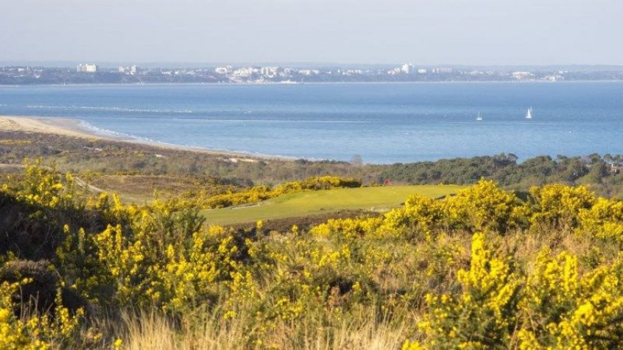 The Isle of Purbeck Golf's lovely golf course within brilliant Devon.