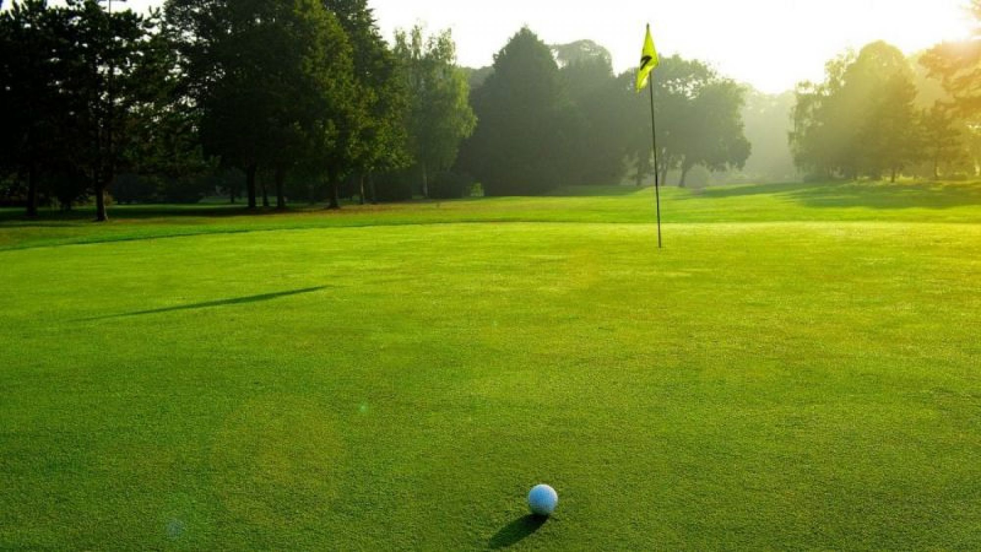 Golf de Reims boasts lots of the most desirable golf course near Champagne & Alsace