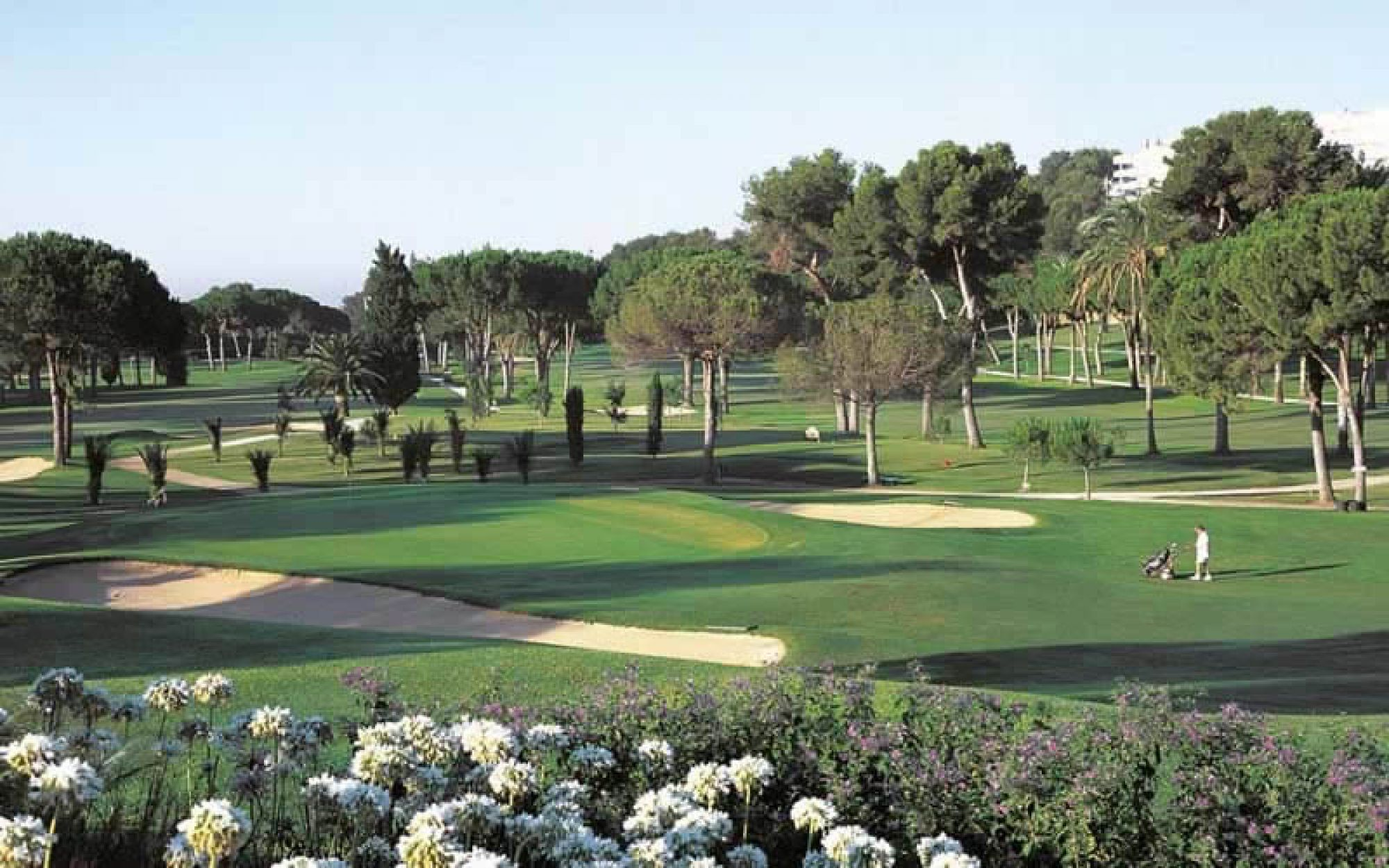 Rio Real Golf Club consists of among the preferred golf course around Costa Del Sol