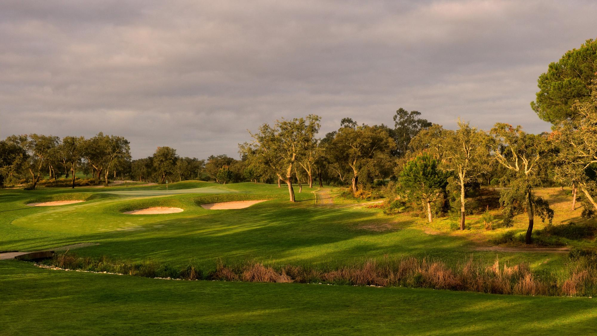 The Riba Golfe 2 's beautiful golf course within staggering Lisbon.