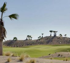 Saurines de la Torre Golf Course  has got among the leading golf course near Costa Blanca
