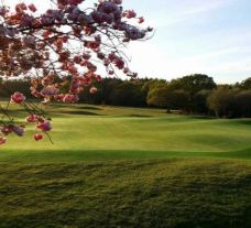 Dorset Golf and Country Club carries several of the best golf course around Devon