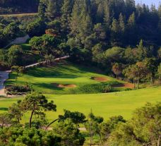 The El Chaparral Golf Club's beautiful golf course within pleasing Costa Del Sol.