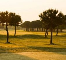 Adriatic Golf Club Cervia includes lots of the most popular golf course around Northern Italy