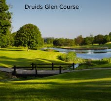 Druids Glen - Wicklow Golf Club hosts several of the preferred golf course near Southern Ireland