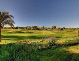 the 7th hole at Boavista Golf Club