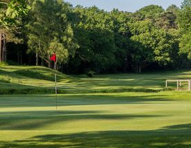 Royal Ashdown Forest Golf Club consists of lots of the leading golf course around Sussex
