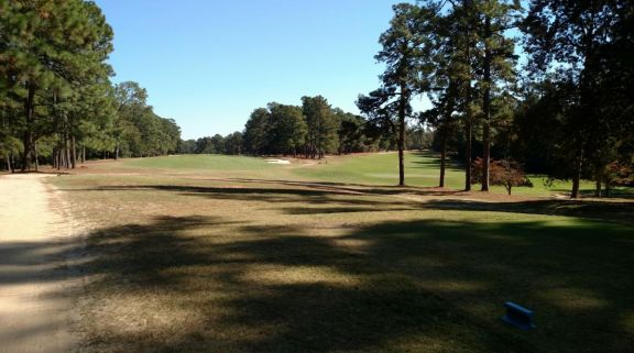 The Palmetto Golf Club's impressive golf course within brilliant South Carolina.
