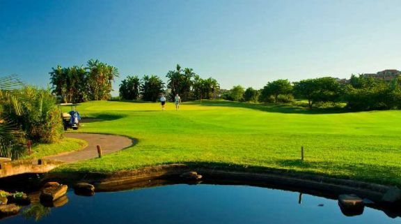 View Zimbali Country Club's picturesque golf course within dazzling South Africa.