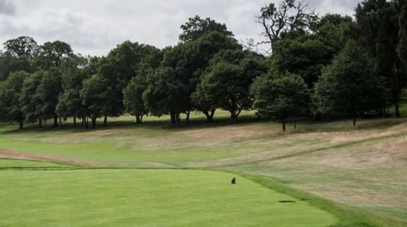 Ashridge Golf Club hosts lots of the most desirable golf course in Hertfordshire