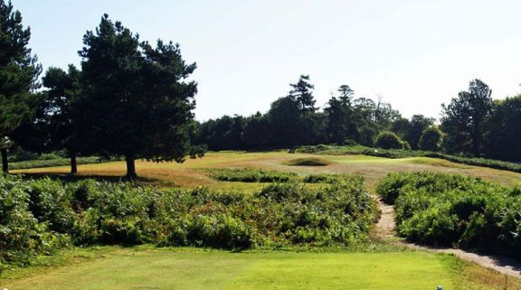 Knole Park Golf Club carries among the premiere golf course around Kent