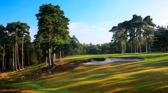 All The West Sussex Golf Club's lovely golf course in pleasing Sussex.