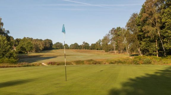 Royal Ashdown Forest Golf Club has some of the most desirable golf course around Sussex
