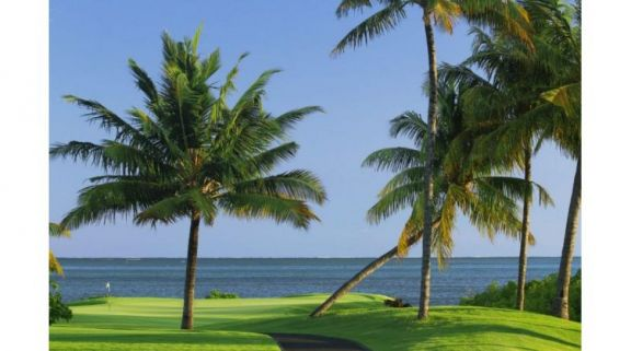 Anahita by Ernie Els has got some of the most excellent golf course within Mauritius